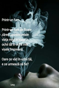 Printr-un fum Lenuș Lungu