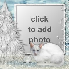 White Christmas Christmas Frames, White Christmas, Ads, Animals, Animales, Animaux, Animal, Animais