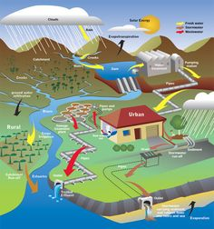 """The Earth has a certain amount of water. This water keeps going over and over again in a circle, in what we call """"The Water Cycle"""" or the """"Hydrological Cycle"""". The Water Cycle, basically is. Sewage Treatment, Water Cycle, Skills To Learn, Save Water, Water Pipes, Earth Science, Solar Energy, Fresh Water, Infographic"""