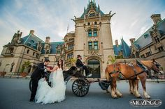 Horse carriage - biltmore estate - inbal dror - Danny & Gisselle ❤️#partywiththepous