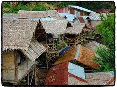 SUMATRA... Bukit Lawang  Site - http://indonesie.eklablog.com Page Facebook - https://www.facebook.com/pages/Indon%C3%A9sie-par-Isabelle-Escapade/269389553212236?ref=hl