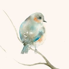 Art Print from my Original Watercolor Painting Tender Blue and Orange Bird
