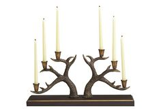 I pinned this Antler Candelabra from the Sedgefield by Adams event at Joss and Main! Camouflage Wedding, Camo Wedding, Best Sheets, Joss And Main, Candelabra, Unique Weddings, My Dream Home, Candle Sconces, Tablescapes