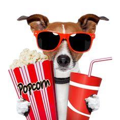 bigstock-Dog-Watching-A-Movie-34583780