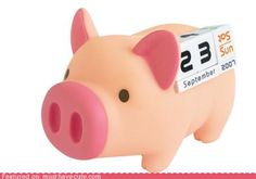 Cute Kawaii Stuff - Calendar Pig