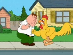family guy chicken fight | family guy | Excruciating Minutiae