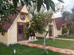bungalov-kazdaglari12 Village House Design, Village Houses, Cabana, Bungalow Hotel, Arched Cabin, Cabin House Plans, Hotel Architecture, Tiny Cabins, Little Cabin