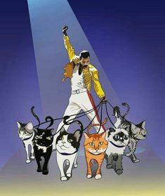Freddie have cats in his life Freddie Mercury Quotes, Queen Freddie Mercury, Freedy Mercury, Freddie Mercuri, Impression Poster, Queen Drawing, Queen Meme, Queen Photos, Queen Art