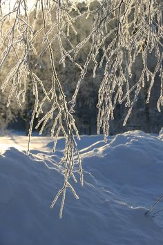 There is nothing like a cold bright winter day in Lovikka, in the north of Sweden. #ice crystals, #snow landscape, #snö, #is