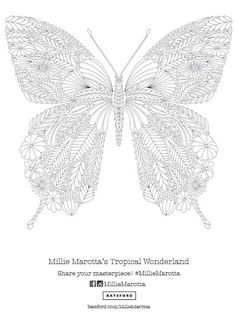 """Adult Coloring: Millie Marotta's """"Tropical Wonderland"""" Butterfly Pattern Free Download!:"""