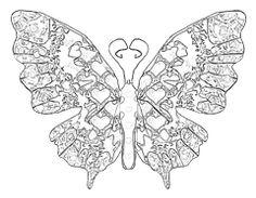 malandoo-malbuch-welt-der-tiere (600×600)   butterfly
