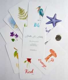 Hand-painted flash cards, designed with little hands in mind. Oversized cards printed on heavyweight paper with a smooth finish. Perfect for color sorting. Learning Cards, Sorting, Card Stock, Ann, Smooth, Hand Painted, Watercolor, Printed, Paper