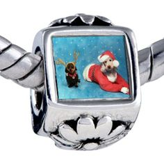 Pugster Santa Reindeer Dogs Beads - Oriana Bead & Bracelet Compatible Pugster. $12.49. Unthreaded European story bracelet design. Hole size is approximately 4.8 to 5mm. Bracelet sold separately. Fit Pandora, Biagi, and Chamilia Charm Bead Bracelets. It's the photo on the flower charm