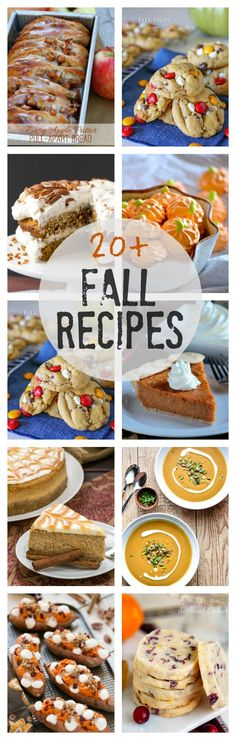 20+ Best Fall Recipes | Blogger friends' favorite fall recipes! @lizzydo