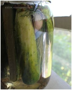 Easy Kosher dill pickle recipe- no canning required.