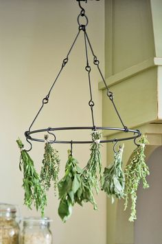 Herb Drying Rack. Buy from Gardener's Supply. Cut herbs in the early morning when the oils are at their best, put into bunches and hang where there is good airflow. These racks made it easy while creating an attractive display.