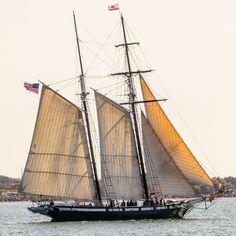 Sail Boats, Sea Glass Art, Sail Away, Set Sail, Amazing Pics, Tall Ships, Rivers, Sailing Ships, Lakes