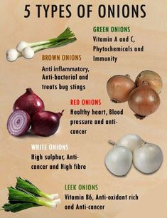 Different Types of Onion and Different Types of Health Benefits - nutrition ideas Types Of Onions, Freezing Lemons, Coconut Health Benefits, Health Benefits Of Onions, Fruit Benefits, Benefits Of Cabbage, Garlic Benefits, Salud Natural, Health Tips
