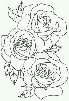 Rose Line Drawings Yahoo Image Search Results Artistic Designs