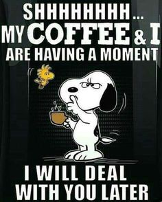 10 snoopy and peanuts gang quotes you can apply to your life and relate to. I Love Coffee, My Coffee, Coffee Talk, Snoopy Und Woodstock, Peanuts Quotes, Snoopy Quotes Love, Funny Quotes, Life Quotes, Coffee Quotes Funny