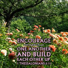 † Like My Bible Life on Facebook at: https://www.facebook.com/MyBibleLife for more daily inspiration. -  1 Thessalonians 5:11