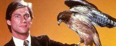 """Adam McKay et Will Ferrell ont le projet fou d'adapter la kitschissime série des années 80 """"Manimal"""" sous forme de comédie !"""