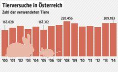 Zahlen über Tierversuche in Österreich