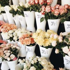 flowers, spring, and indie image