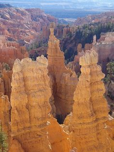 Hoodoos on the Fairyland Canyon Loop Trail, Bryce Canyon National Park, United States