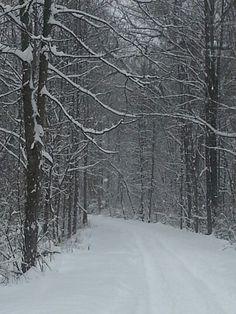 Lehigh Valley Trail