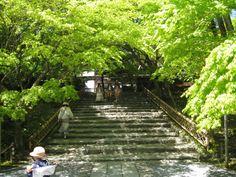 龍安寺へと続く階段。