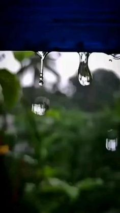 Green Background Video, Love Background Images, Cool Pictures Of Nature, Beautiful Photos Of Nature, Beautiful Words Of Love, Beautiful Songs, Love Wallpapers Romantic, Animated Love Images, Rain Photography