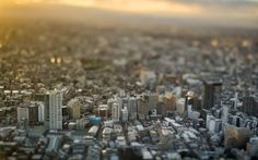 evening sunlight by takashi kitajima on 500px