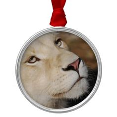 A gentle lion Double-Sided heart ceramic christmas ornament Mountain Lion, Animal Kingdom, Lions, Ceramics, Christmas Ornaments, Metal, Celebration, Animals, Heart