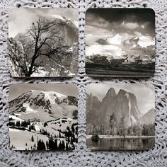 Take A Picture  Trees and Mountains Photography mousepad coaster set coasters by Polkadotdog