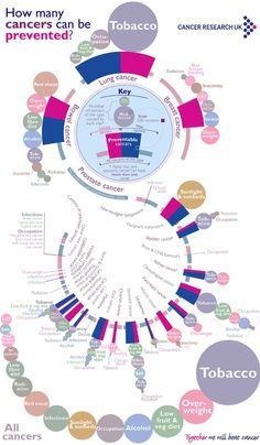 Como o câncer pode ser prevenido. Infográfico incrível!
