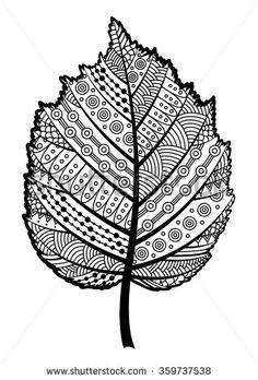 Zentangle black and white leaf of the tree hazel. Vector illustration.