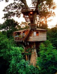 7 best pallet tree houses images gardens treehouse cubby houses rh pinterest com