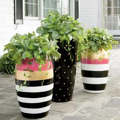 Fill outdoor planters with colorful blooms to transform your backyard or patio. Find large planters, urn planters, window boxes and more at Grandin Road. Painted Flower Pots, Painted Pots, Painted Pebbles, Small Urns, Garden Pots, Balcony Gardening, Container Gardening, Garden Design, Grandin Road