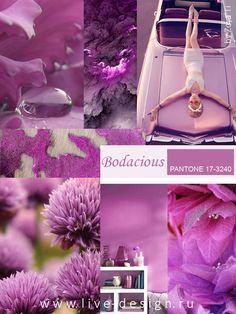 Bodacious / Безрассудный модный цвет Pantone сезона осень-зима 2016
