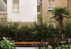 Curran House on Behance Landscape Architecture, Landscape Design, Exotic Plants, How To Level Ground, Garden Inspiration, Garden Ideas, Design Awards, Exterior, Building
