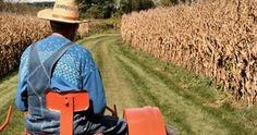 Ψαλίδι 57,8% στις επιστροφές του Ειδικού Φόρου κατανάλωσης πετρελαίου για αγρότες