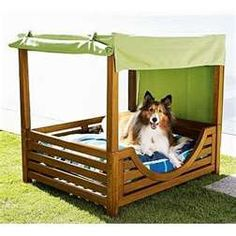 Canopy bed for dog.  I think Joey should build one of these beds for Cano..... From grandma
