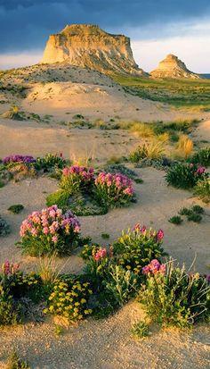 Pawnee National Grassland, northeastern Colorado ~ John Fielder