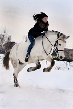 Byelorussian Harness Horse. Such a fun photo!