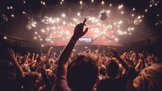 Amsterdam's best nightlife – clubs, music venues and cabaret