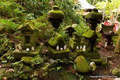 Trip to Japan 2008: Day 6 Part 5 - Kamakura (鎌倉) Sasuke Inari Shrine (佐助稲荷神社)