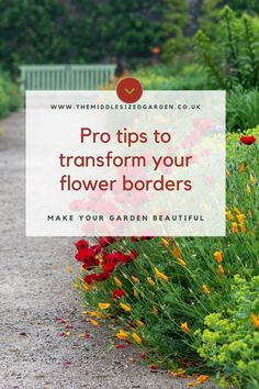 Add the wow factor to your garden borders. Flower border ideas and tips to make your garden look stunning. #middlesizedgarden Low Maintenance Garden Design, Border Ideas, Garden Borders, Wow Factor, Colorful Garden, Wow Products, Garden Styles, Beautiful Gardens, How To Plan