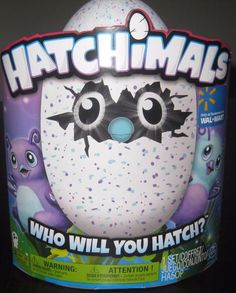 Spinmaster Hatchimals Walmart Exclusive Purple & Teal Egg Burtle New Ships FAST #Spinmaster