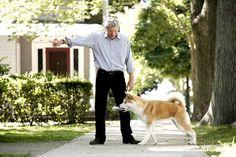 Richard Gere - Hachiko: A Dog's Story Cindy Crawford, Richard Gere Movies, Hachi A Dogs Tale, A Dog's Tale, Bear Attack, Akita Dog, Dog Stories, Dog Eyes, Relationship Tips